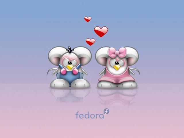 cute desktop wallpaper. Name: Love Fedora Wallpaper