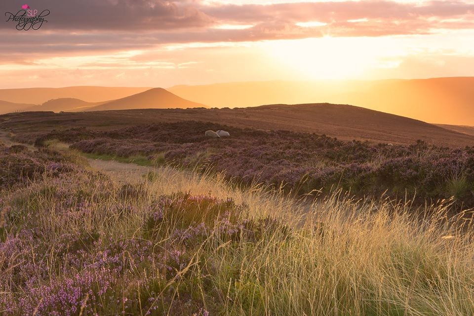 Name:  Sunset at Win Hill in the Peak District.jpg Views: 197 Size:  126.2 KB