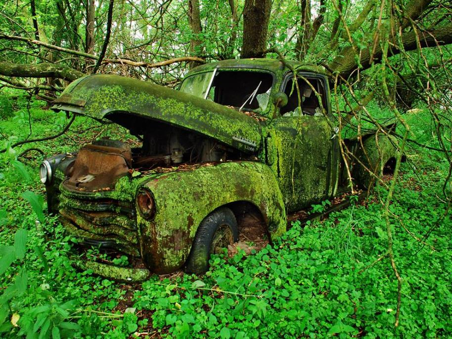 Name:  truck-moss-woods_42607_990x742.jpg
